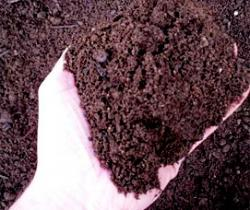 Soils and Composts for gardens, beds and borders