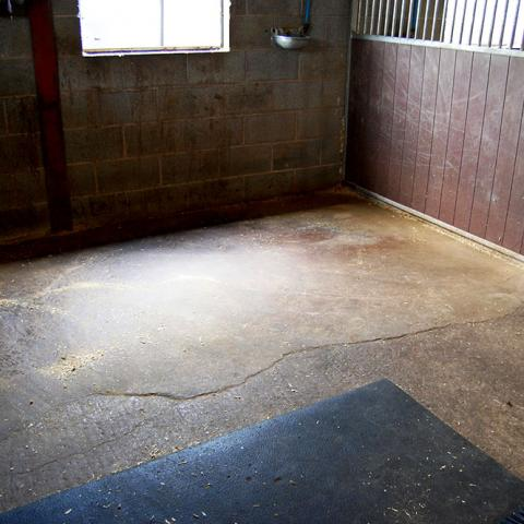 An empty stable