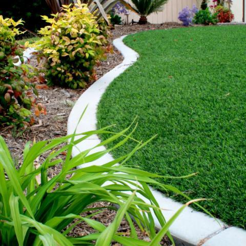 Artificial Grass shown in a garden