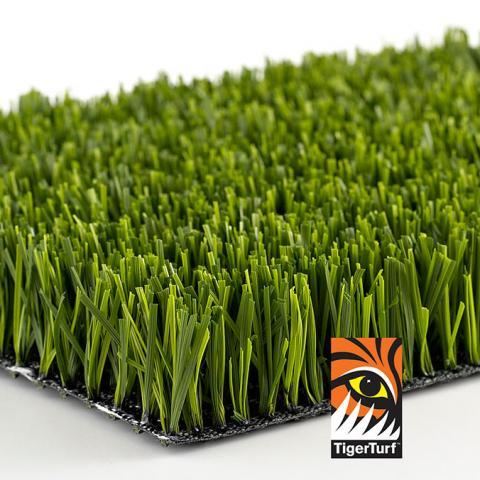 Aspire Artificial Grass
