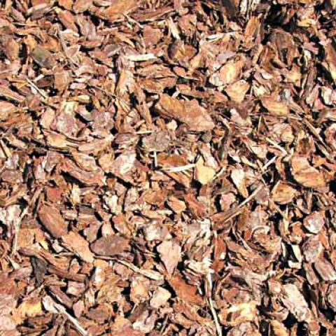 Chunky Pine Grade Bark