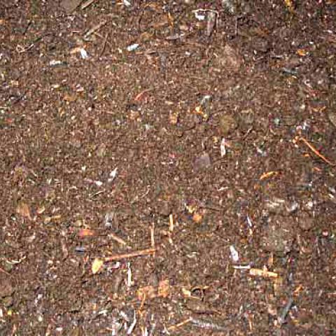 Ecoplant Compost