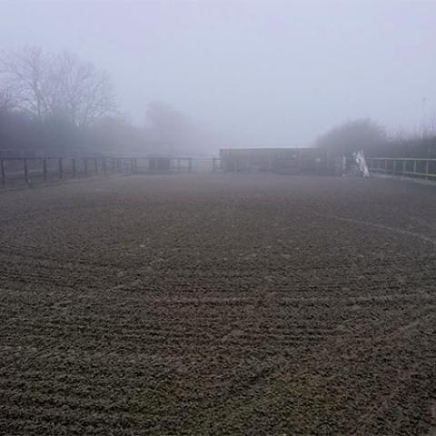 Equestrian Rubber Surfaces before