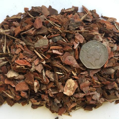 Mini Chip Pine Border Bark