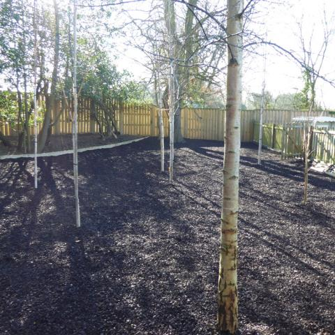 Rubber Chippings in a school setting