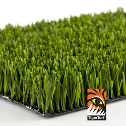 Aspire Artificial Grass