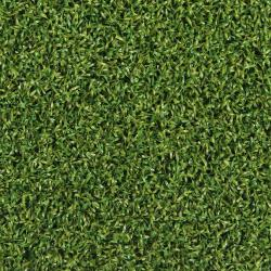 Golf 13 artificial grass
